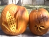 1-corn-arabidposis-pumpkins
